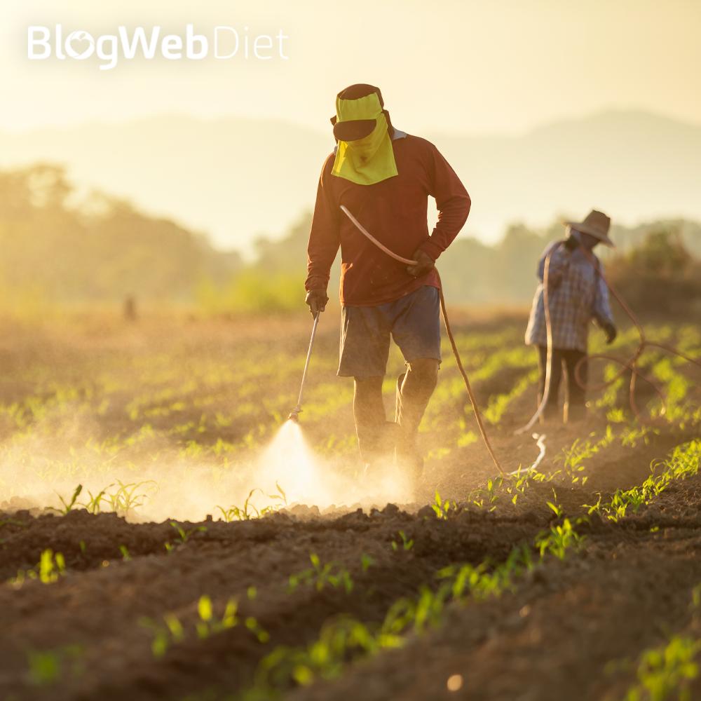 Agrotóxicos e Comunidade que Sustenta a Agricultura