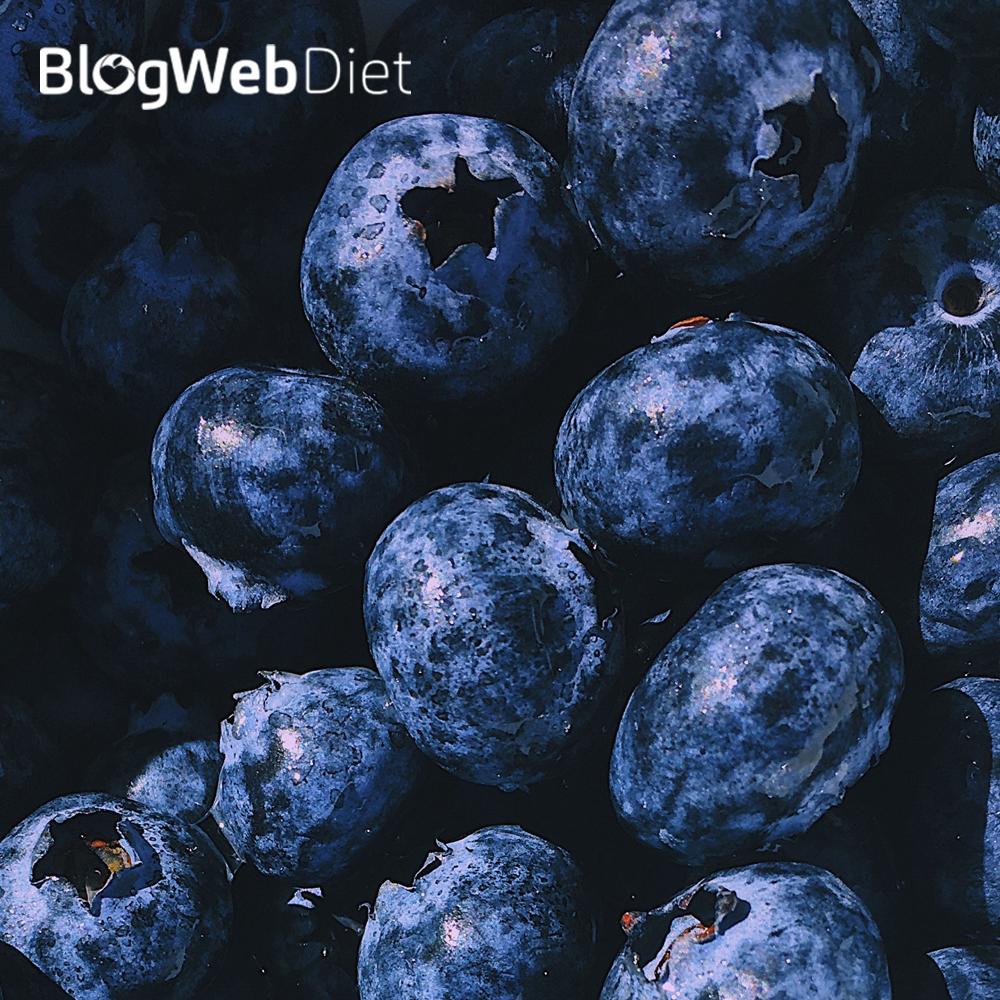 Propriedades anti-inflamatórias e imunomodulatórias de alimentos vegetais fermentados